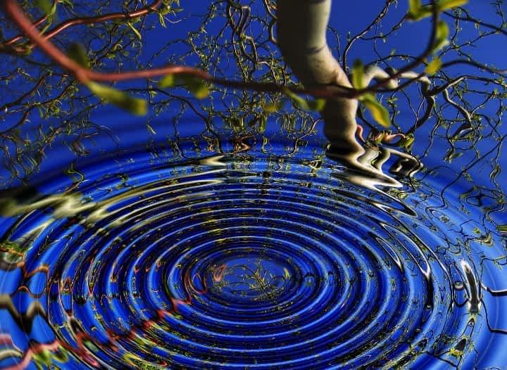 ripples in pond